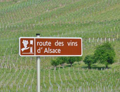 Route des Vins dAlsace